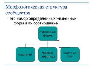 Морфологическая структура сообщества - это набор определенных жизненных форм