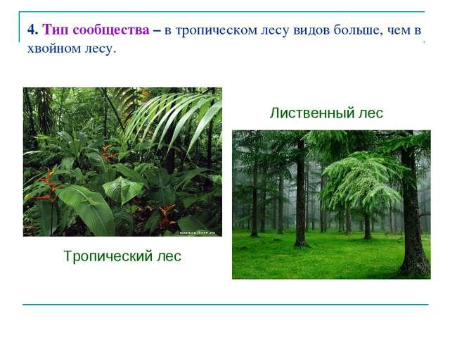 4. Тип сообщества – в тропическом лесу видов больше, чем в хвойном лесу. Троп...