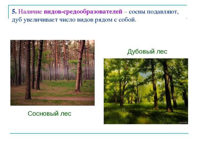 5. Наличие видов-средообразователей – сосны подавляют, дуб увеличивает число...