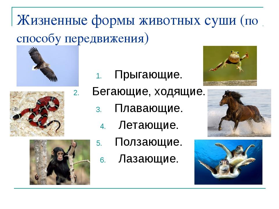 Жизненные формы животных суши (по способу передвижения) Прыгающие. Бегающие,...