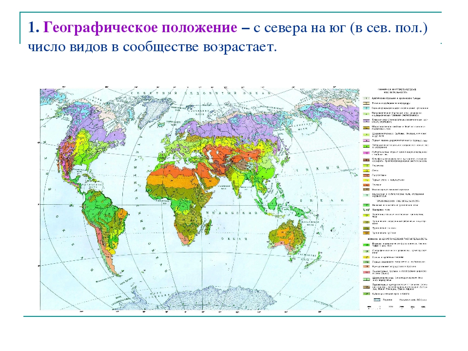 1. Географическое положение – с севера на юг (в сев. пол.) число видов в сооб...
