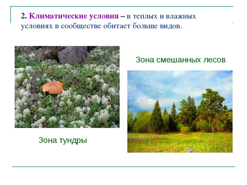 2. Климатические условия – в теплых и влажных условиях в сообществе обитает б...