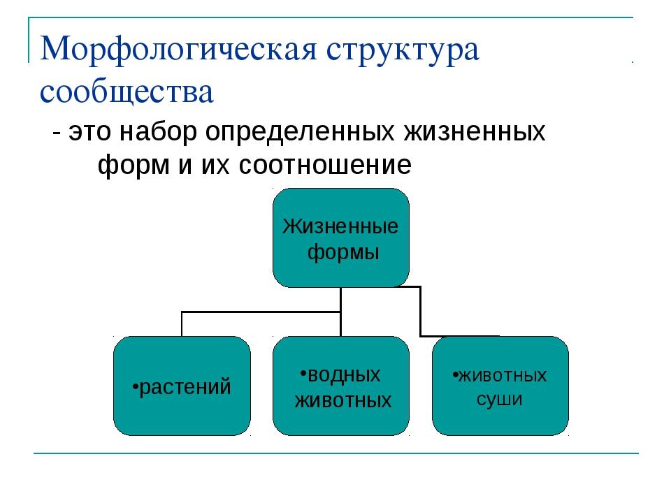 Морфологическая структура сообщества - это набор определенных жизненных форм...