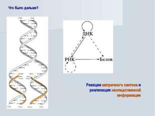 Что было дальше? Реакции матричного синтеза и реализация наследственной инфор