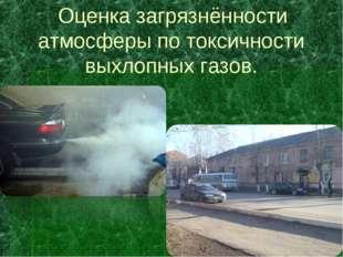 Оценка загрязнённости атмосферы по токсичности выхлопных газов.