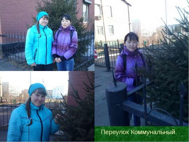 Переулок Коммунальный.