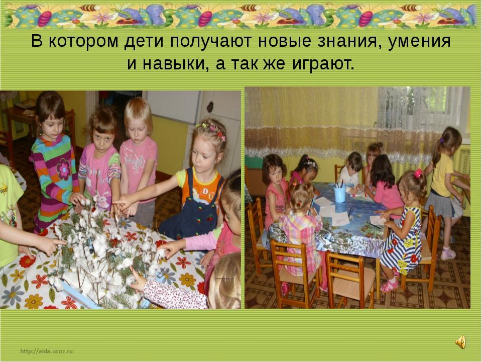 В котором дети получают новые знания, умения и навыки, а так же играют.