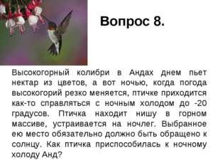 Вопрос 8. Высокогорный колибри в Андах днем пьет нектар из цветов, а вот ноч