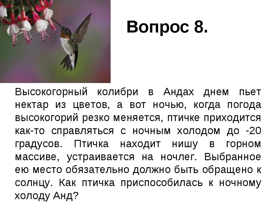 Вопрос 8. Высокогорный колибри в Андах днем пьет нектар из цветов, а вот ноч...