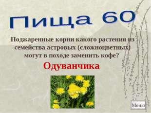 Меню Поджаренные корни какого растения из семейства астровых (сложноцветных)