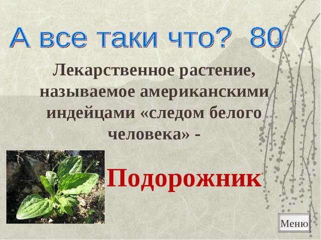 Лекарственное растение, называемое американскими индейцами «следом белого чел...
