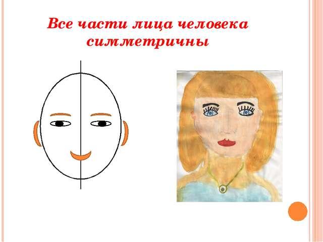 Все части лица человека симметричны