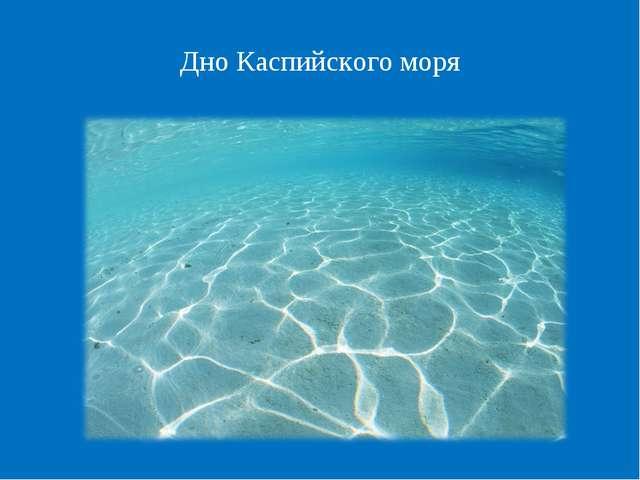 Дно Каспийского моря