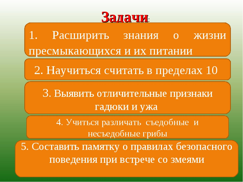 Задачи: 1. Расширить знания о жизни пресмыкающихся и их питании 2. Научиться...