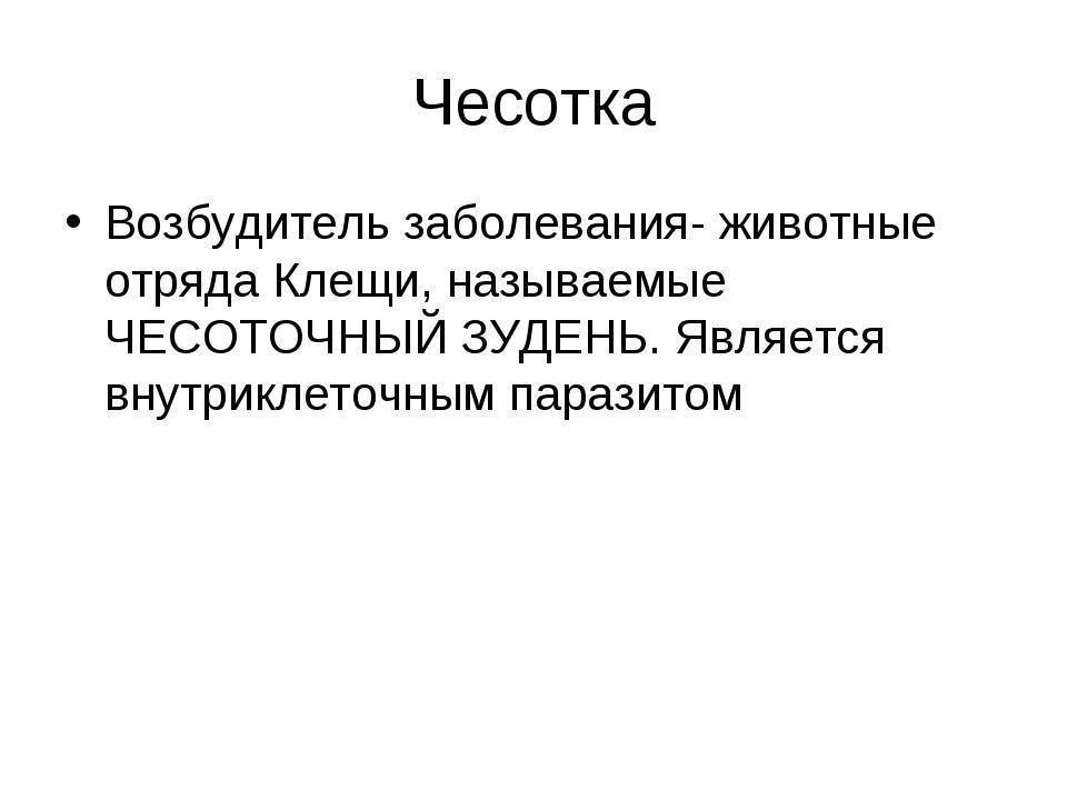 Чесотка Возбудитель заболевания- животные отряда Клещи, называемые ЧЕСОТОЧНЫЙ...