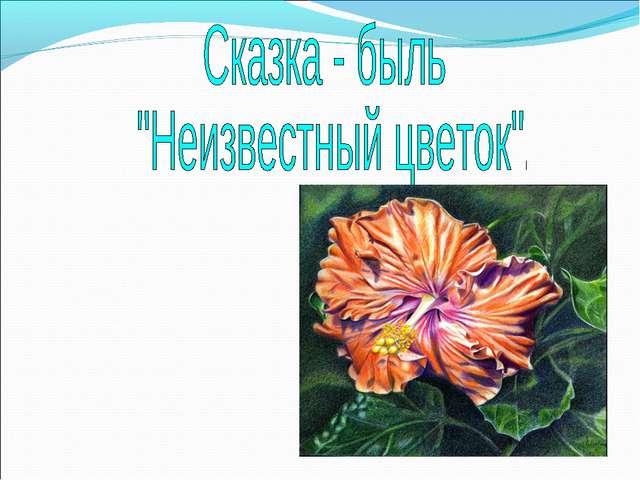 Цитаты платонов неизвестный цветок