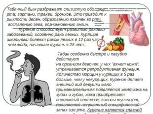 Табачный дым раздражает слизистую оболочку рта, гортани, трахеи, бронхов. Это