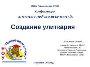 МКОУ Лизиновская СОШ Лизиновка 2015 год Курочкина Татьяна Андреевна, учитель