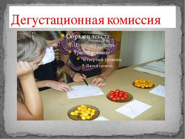 Дегустационная комиссия