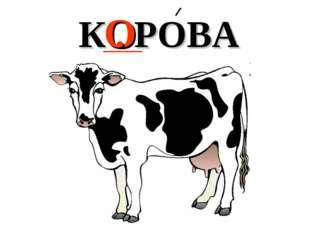 О К . РОВА