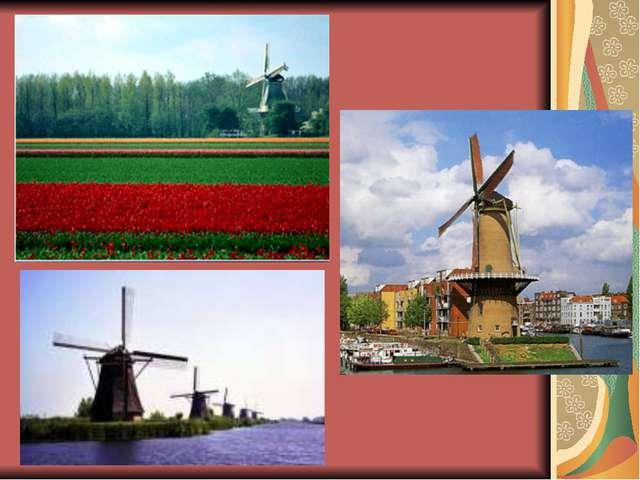 В Голландии производят очень вкусный сыр.