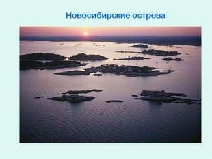 Новосибирские острова
