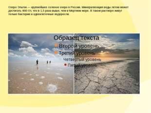 Озеро Эльтон— крупнейшее соленое озеро вРоссии. Минерализация воды летом мо