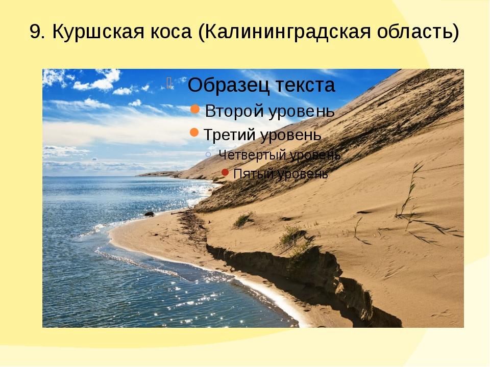 9. Куршская коса (Калининградская область)