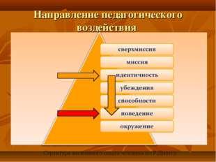 Направление педагогического воздействия . Структура жизненного опыта человека