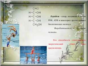 D-рибоза- сахар, входящий в состав РНК, АТФ и некоторых других важных биоло