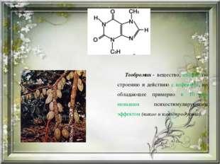 Теобромин- вещество, схожее по строению и действию с кофеином, но обладающе