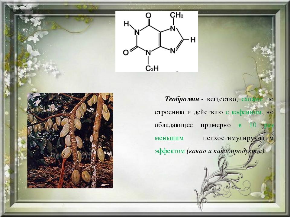 Теобромин- вещество, схожее по строению и действию с кофеином, но обладающе...