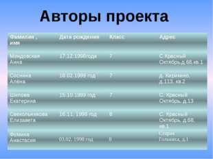 Авторы проекта Фамилия , имя Дата рождения Класс Адрес Миндовская Анна 17.12.