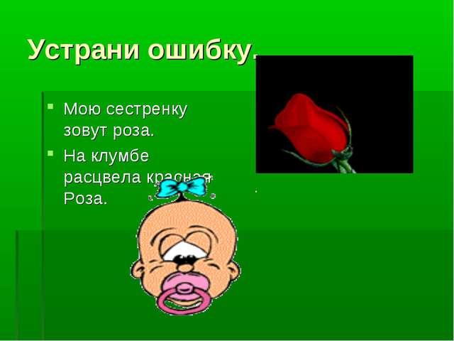 Устрани ошибку. Мою сестренку зовут роза. На клумбе расцвела красная Роза.
