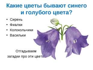 Какие цветы бывают синего и голубого цвета? Сирень Фиалки Колокольчики Василь