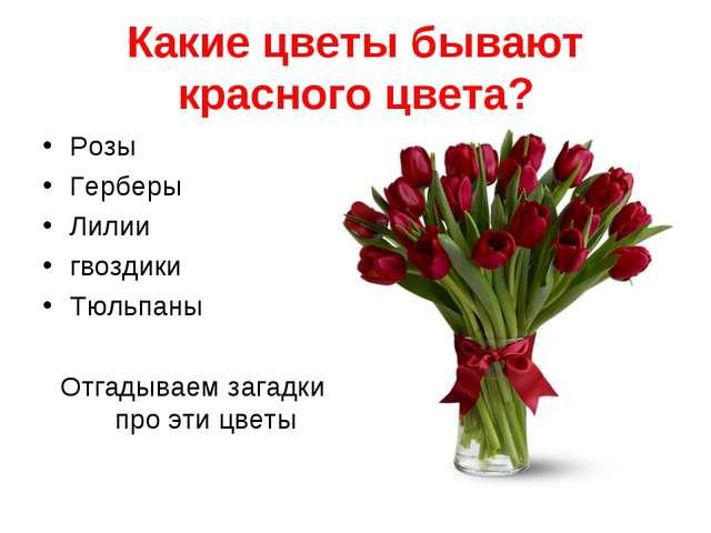 Какие цветы бывают красного цвета? Розы Герберы Лилии гвоздики Тюльпаны Отгад...