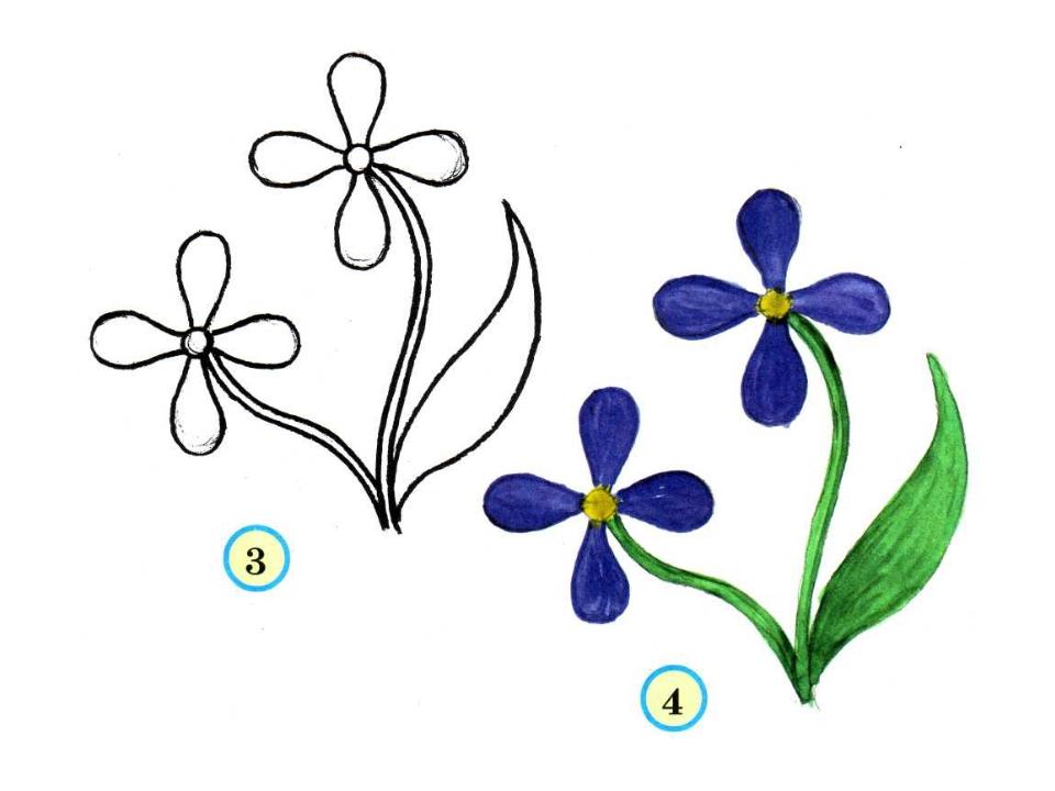 Нарисовать поэтапно цветы