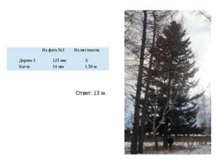 Ответ: 13 м. На фото №3 На местности Дерево 3 125 мм Х Костя 14 мм 1,50 м