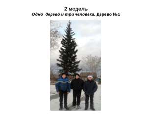 2 модель Одно дерево и три человека. Дерево №1