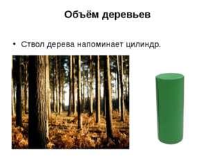 Объём деревьев Ствол дерева напоминает цилиндр.