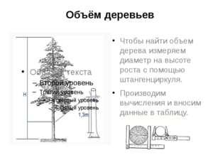 Объём деревьев Чтобы найти объем дерева измеряем диаметр на высоте роста с по