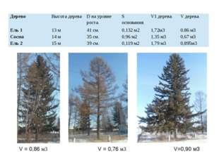 V = 0,86 м3 V = 0,76 м3 V=0,90 м3 Дерево Высота дерева Dна уровне роста. Sосн