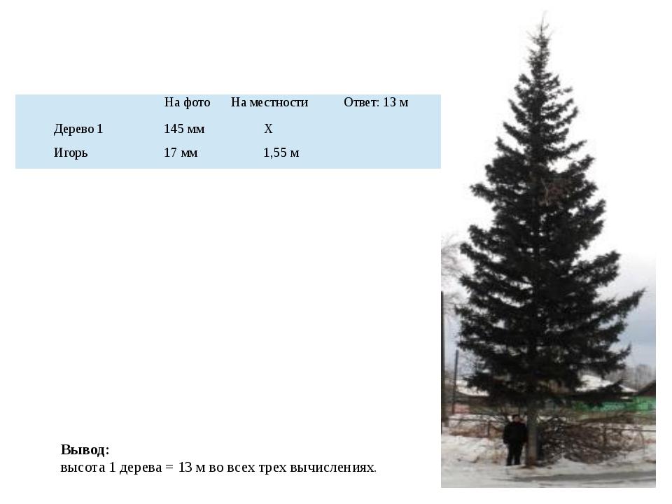 Вывод: высота 1 дерева = 13 м во всех трех вычислениях. На фото На местности...