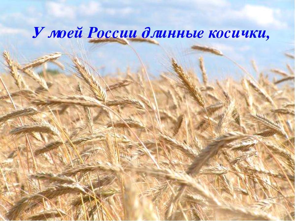 У моей России длинные косички,