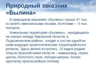 Природный заказник «Былина» В природном заказнике «Былина» свыше 47 тыс. га