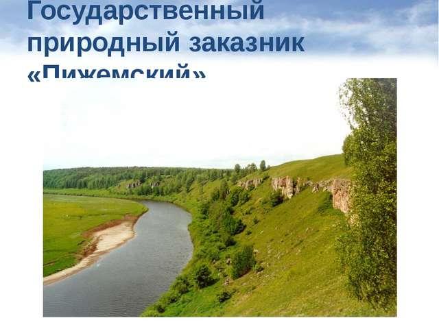 Государственный природный заказник «Пижемский»