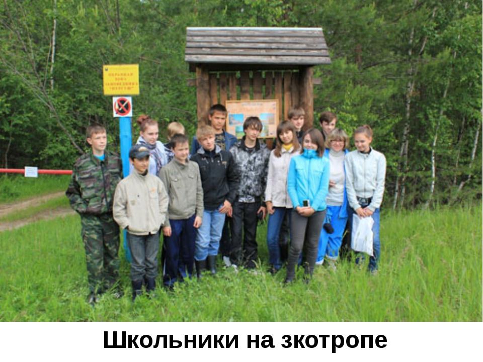Школьники на зкотропе