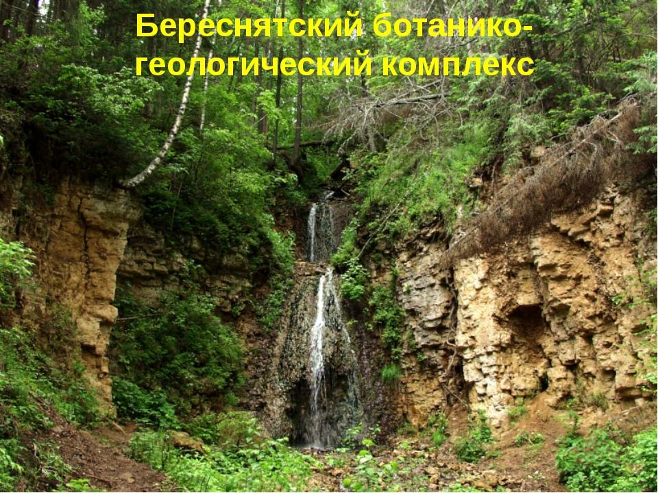 Береснятский ботанико-геологический комплекс