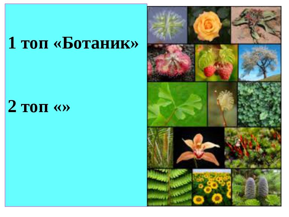 1 топ «Ботаник» 2 топ «»