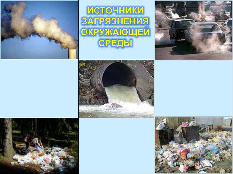 Реферат на тему промышленные загрязнения 6191